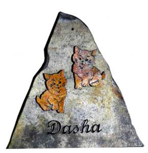 les-chats-de-dasha